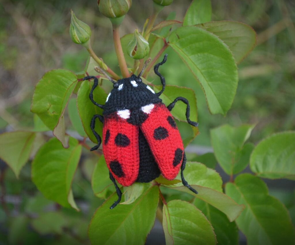 Three Fancy-Ass Insect Patterns For Crocheters ... I Spy a Ladybug and Two Beetles!