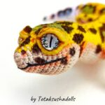 Incredible Leopard Gecko Amigurumi … I'll Say It Again, Realistic Reptile is an UNDERSTATEMENT!