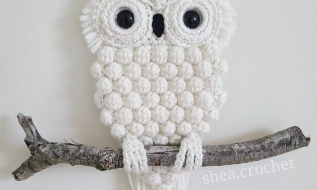 Crochet a Cute Retro-Inspired Owl Wall Hanging … The Perfect Housewarming Gift For 2021 and Beyond!