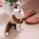 Knit a Lifelike Calico Kitten, This Must-Make Brought To You By Claire Garland