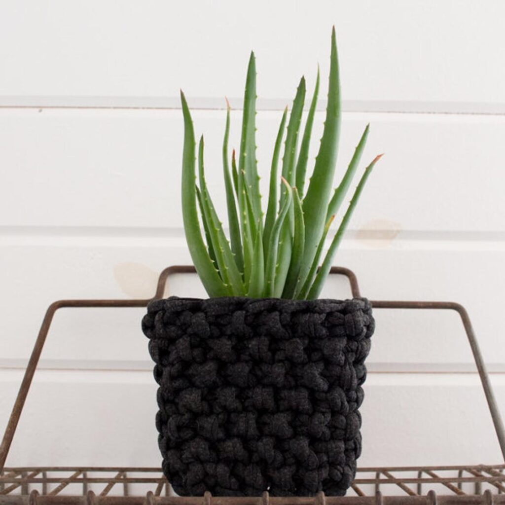3 Plant Cozy Knitting Patterns ... Hello, Perfect Housewarming Gift OR Make 'Em For Your Own Home!