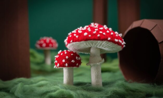 Knit a Classic Fly Agaric Mushroom … The Quintessential Toadstool Of Video Games and Fairytales!