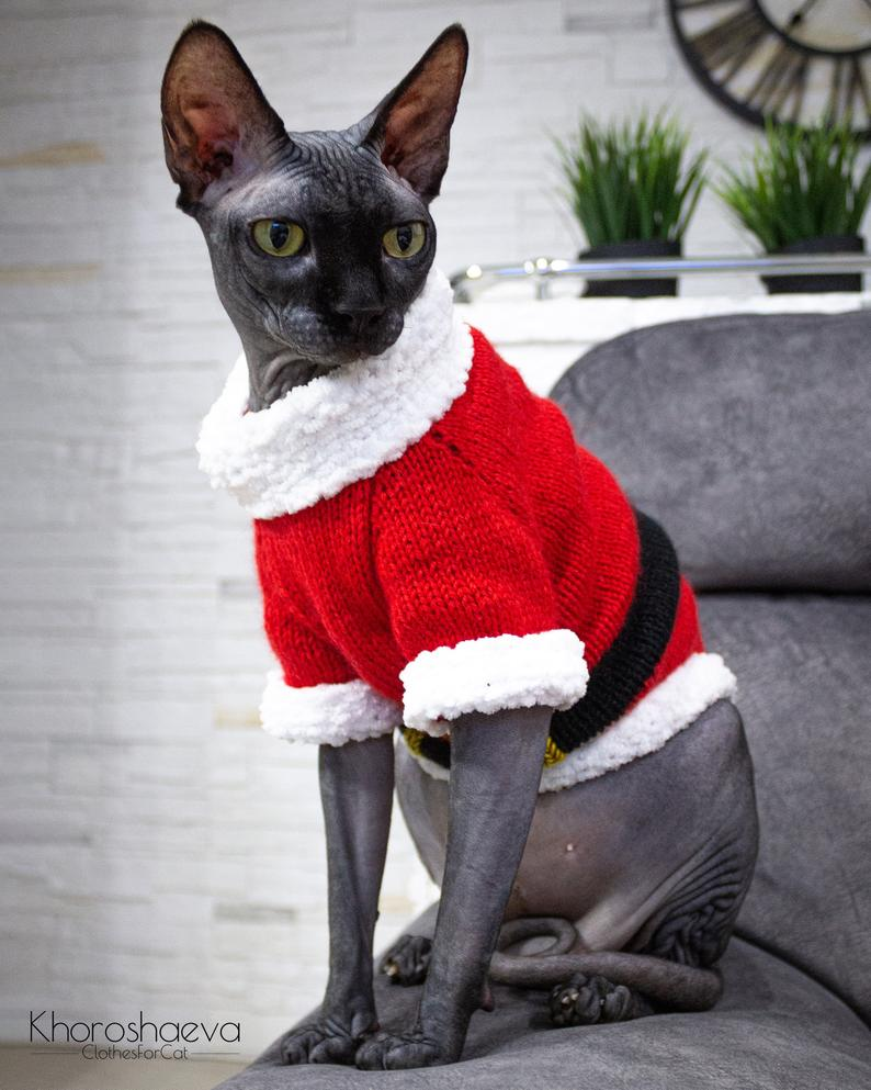 Christmas In July ... Knit A Seamless, Santa-Inspired Christmas Sweater For You Kitty-Cat
