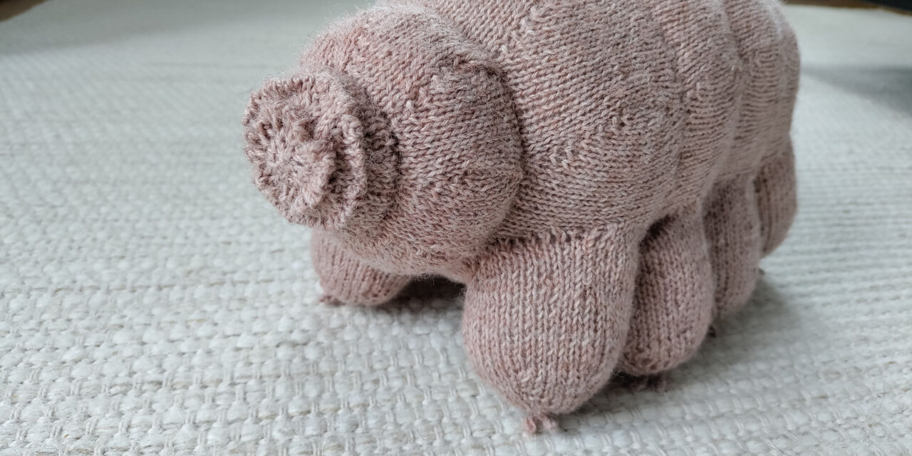 Knit A Steve The Tardigrade With A Free Pattern From Sofia Raak